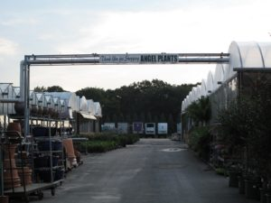 #2 - The gateway into the rather large nursery