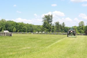 Mowing a paddock - they get mowed every week or two.
