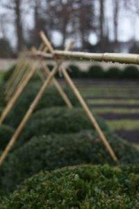 A crosspiece of bamboo is attached to the tops of the 'teepees.'