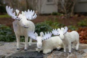 A charming white moose collection