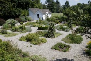The herb garden was designed in 1992 by Paige Dickey, a nationally recognized garden designer and author.  It is based on typical 18th and 19th century American and English gardens.  Established in 1993, the garden is maintained by the New York Unit of the Herb Society of America.