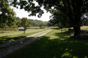 The long and inviting Farm Road on the property