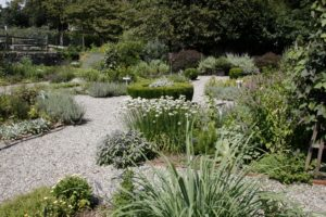 The herb garden is a lovely combination of culinary and medicinal herbs.
