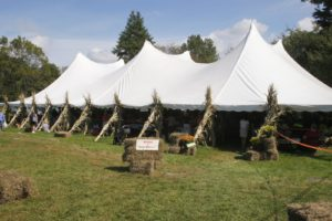 The big white tent on the sprawling grounds of the John Jay Homestead all decorated for harvest time