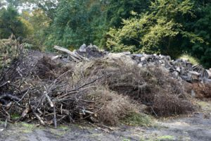 Looking closely, you can see that it's actually very organized - brush and sticks in the front and....