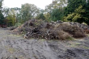 This is the large mound where all of the hard brush and logs from the farm are piled.