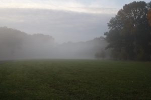 Dense fog at a lower elevation