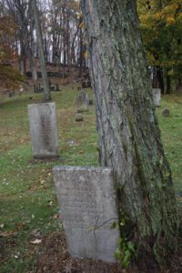 The headstone of Issac Smith, now sharing space with a tree.
