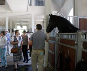 The horses love when people come to tour the farms and gardens.