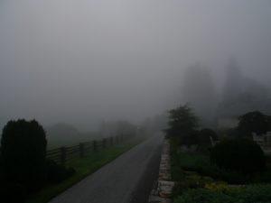 It was so very foggy.