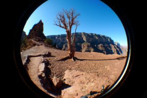 Grand Canyon, AZ, South Rim - taken with Lumix LX3 using Fisheye Lens