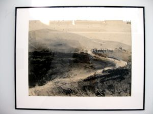 Sophie Nicolay - untitled landscape 1