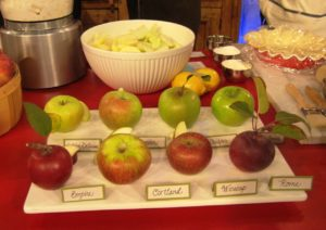 For my pie, I used Empire and Granny Smith apples.  Other good pie choices include Golden Delicious, Macoun, Crispin, Cortland, Winesap, and Rome.