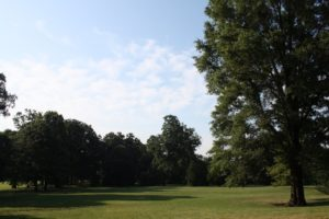 A wide expanse of lawn - it has multiple uses since it is a college campus.