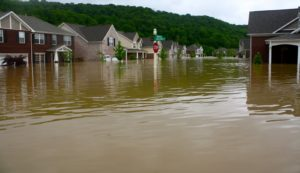 The nearby Harpeth River flooded the community.