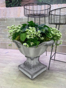 Here is my Fruit Basket Planter which comes with a decorative Removable Top. It is also made of fiber resin and is so light and easy to carry – it weighs only 19-pounds and can be used indoors and out. Here it is displayed with the top off and a plant inside.