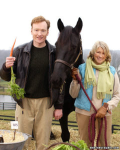 Conan O'Brien joins me at the stables to feed and groom horses. (OAD: 11/24/2003)