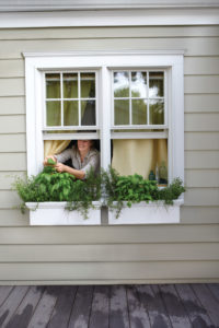 The editors share which plants and flowers work best in window boxes and containers.