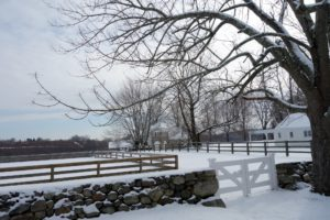 Jody's horse farm, Pink Cloud, is a private boarding, training, and sales facility.