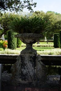 The centre island of Vizcaya appears to be floating in its own pool of water. The rectangular pool is surrounded with these coral stone urns, which are planted with Neoregelia 'Sheba'.