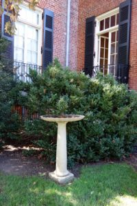 In the tradition of European garden design, Mildred Bliss and Beatrix Farrand incorporated a rich mixture of garden ornament, some purchased and some designed.  I loved this cast stone birdbath, which looked like an Eric Soderholz, an artist from Maine where Beatrix also worked.