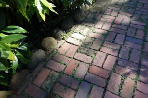 This is a good idea for edging a brick walk - lining it with field stones.