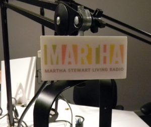 Our logo on the microphone flag