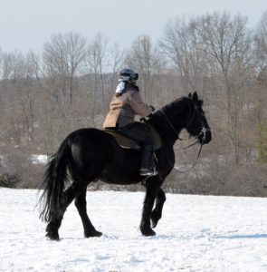 In winter, Betsy is clad in 4 or 5 layers of warmth, including an insulated riding jacket and pants by Mountain Horse.  http://mountainhorseusa.com/