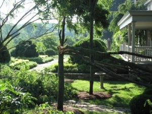 There was a lot of damage right outside my home.  A lovely black locust fell but did not hit the house.