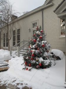 One of several Christmas trees set up for the holidays.  They really looked great covered with snow.