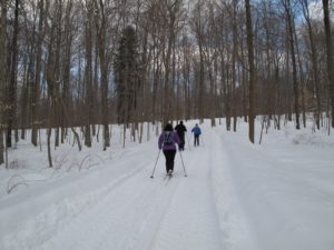 The carriage roads through the woods had been plowed after the last snowfall, making cross-country skiing quite pleasant.