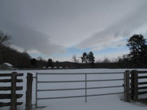 Looking down towards the chicken coops - you can see their four snow-covered roofs.