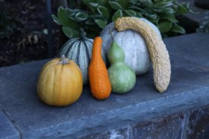 Pumpkins and gourds adorn the walls.