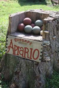 When not in use, a carved out tree trunk holds a set of bocce balls.