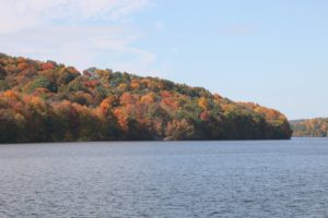 The foliage surrounding the reservoir is amazing.