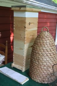 Marina likes to experiment with different kinds of hives.
