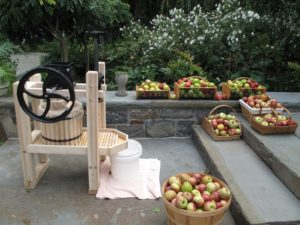I had the cider press set up right outside the back door.  We had a large assortment of apples washed and ready for pressing.