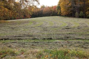 A few weeks ago, Dominick gave the hay fields a final mow.  Here the hay is drying before baling.