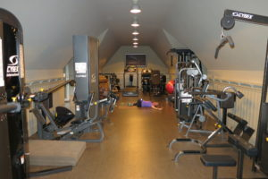 My gym is well equipped.  It was designed by Alexis a few years ago and she put almost everything I need in the second floor of the garage.  The equipment has held up very well.
