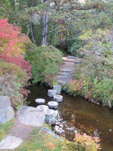 Quaint stone steps, get you across the stream.
