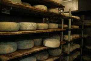 This is one of the cheese caves in The Larder, where there were lots of cheeses aging.