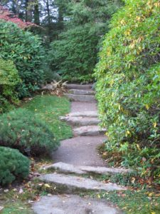 Another pathway