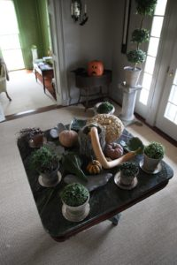 Interesting squashes and succulents atop this marble table