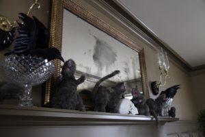 Spooky rats