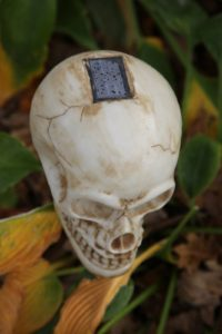 The skulls are actually eerie illumination powered by a solar chip.