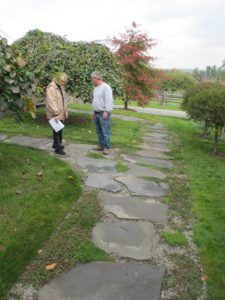 I would also like these stones on this path to be moved closer together, which will make walking easier.