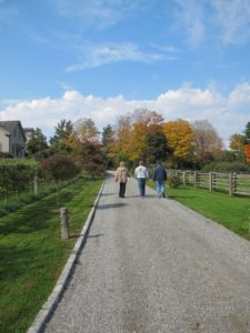 Walking towards the summer house to review the 'real' project