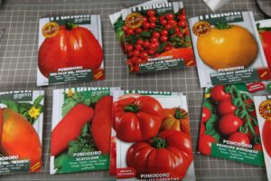 Ryan McCallister, the new gardener, has been busy in the greenhouse planting tomato seeds.
