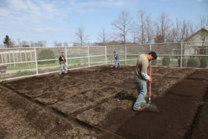 Shaun, Ryan, and Wilmer have been finishing the reconfiguration of the vegetable beds.  Seven truckloads of compost have been added this spring.