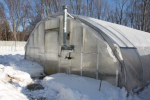 There are two hoop houses on the farm.  In the outside garden, Lisa is still digging carrots and leeks up from beneath the snow.
